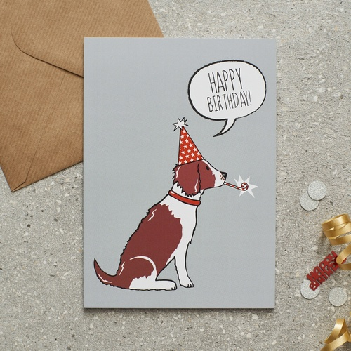 Springer Spaniel Liver White Birthday Card 275 Mischievous