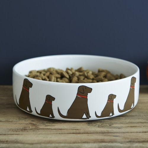 Chocolate Labrador Dog Bowl