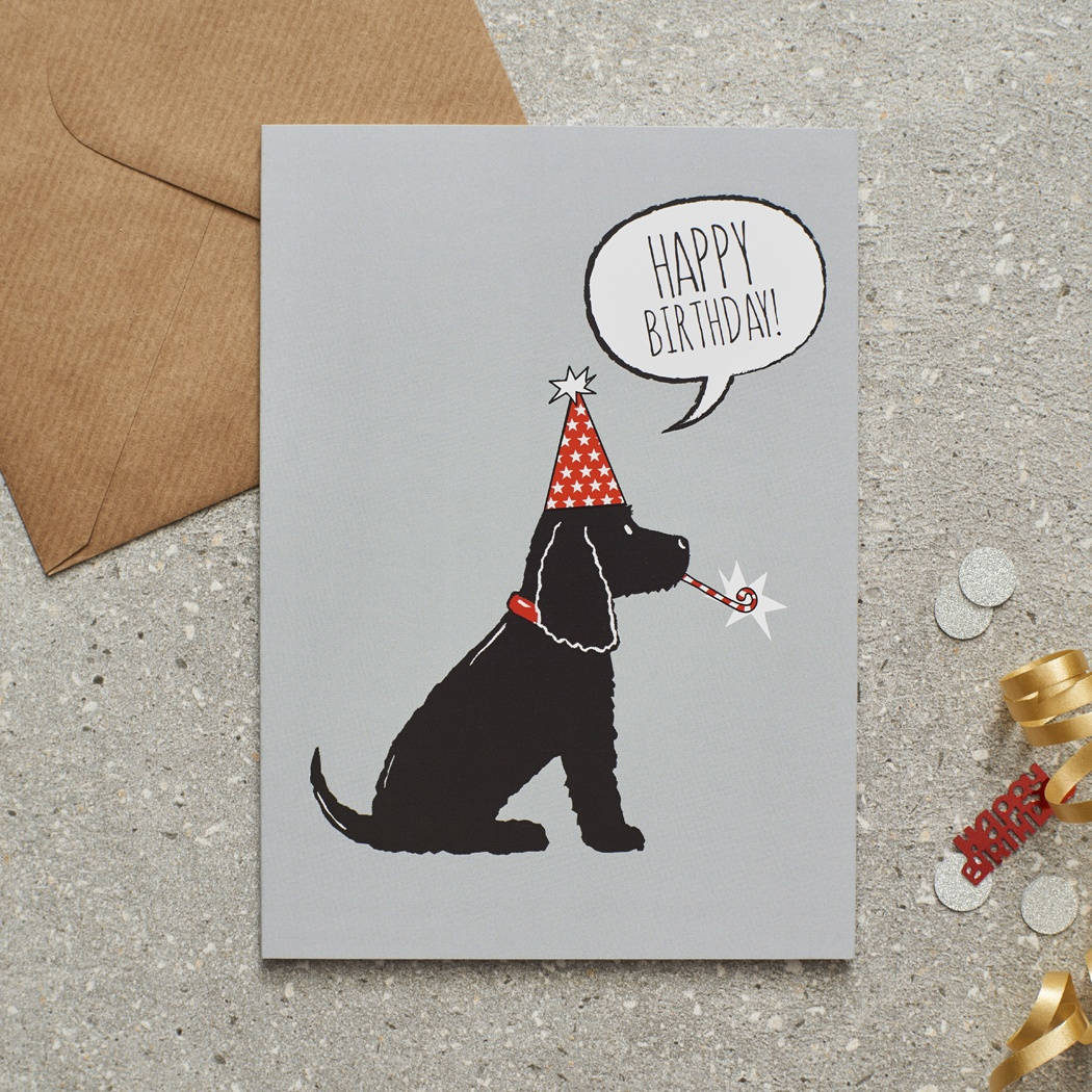 Cocker Spaniel (black) Birthday Card , Mischievous Mutts > Greeting Cards , Cocker Spaniel
