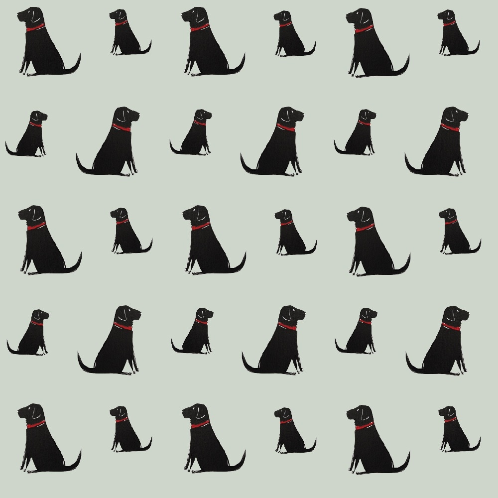 Black Labrador Wallpaper , Mischievous Mutts > Wallpaper , Black Labrador