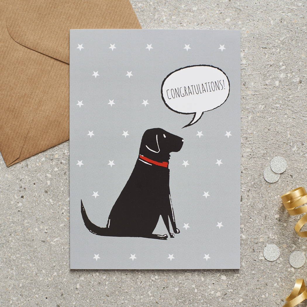Black Labrador Congratulations Card