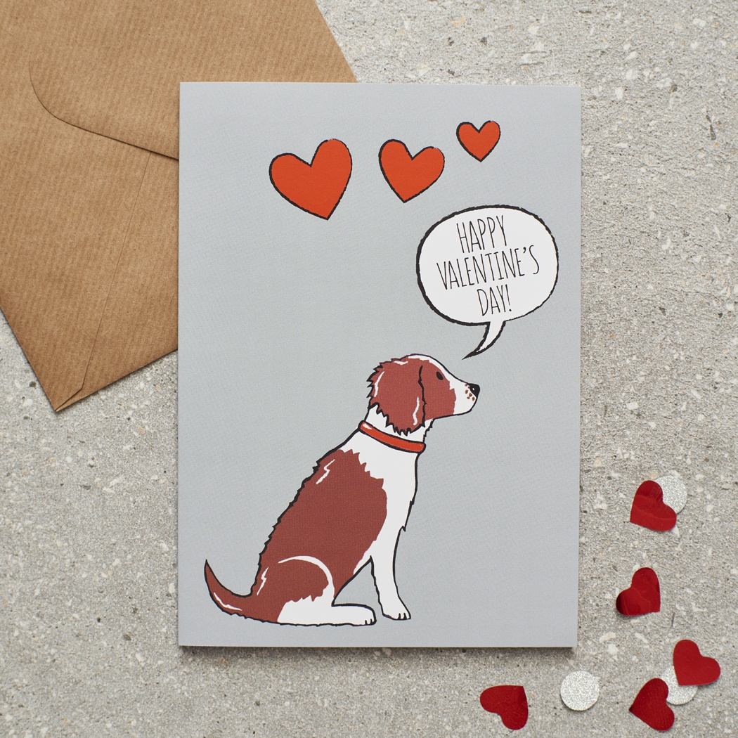 Springer Spaniel (Liver & White) Valentine's Day Card , Mischievous Mutts > Greeting Cards , Springer Spaniel