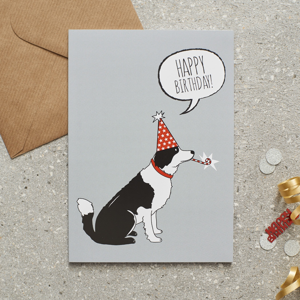 Border Collie Birthday Card , Mischievous Mutts > Greeting Cards , Border Collie