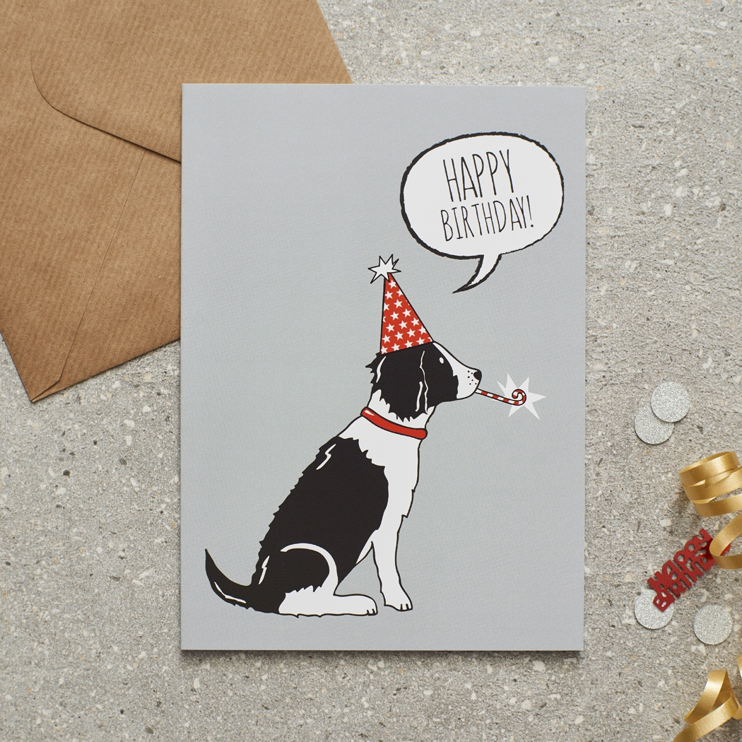 Springer Spaniel (Black & White) Birthday Card , Mischievous Mutts > Greeting Cards , Springer Spaniel