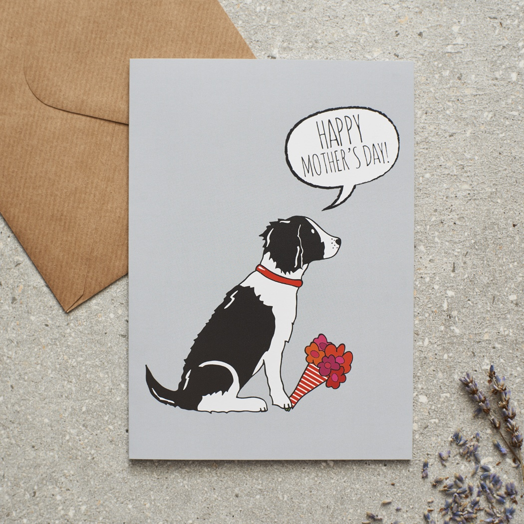 Springer Spaniel (black & white) Mother's Day Card , Mischievous Mutts > Greeting Cards , Springer Spaniel