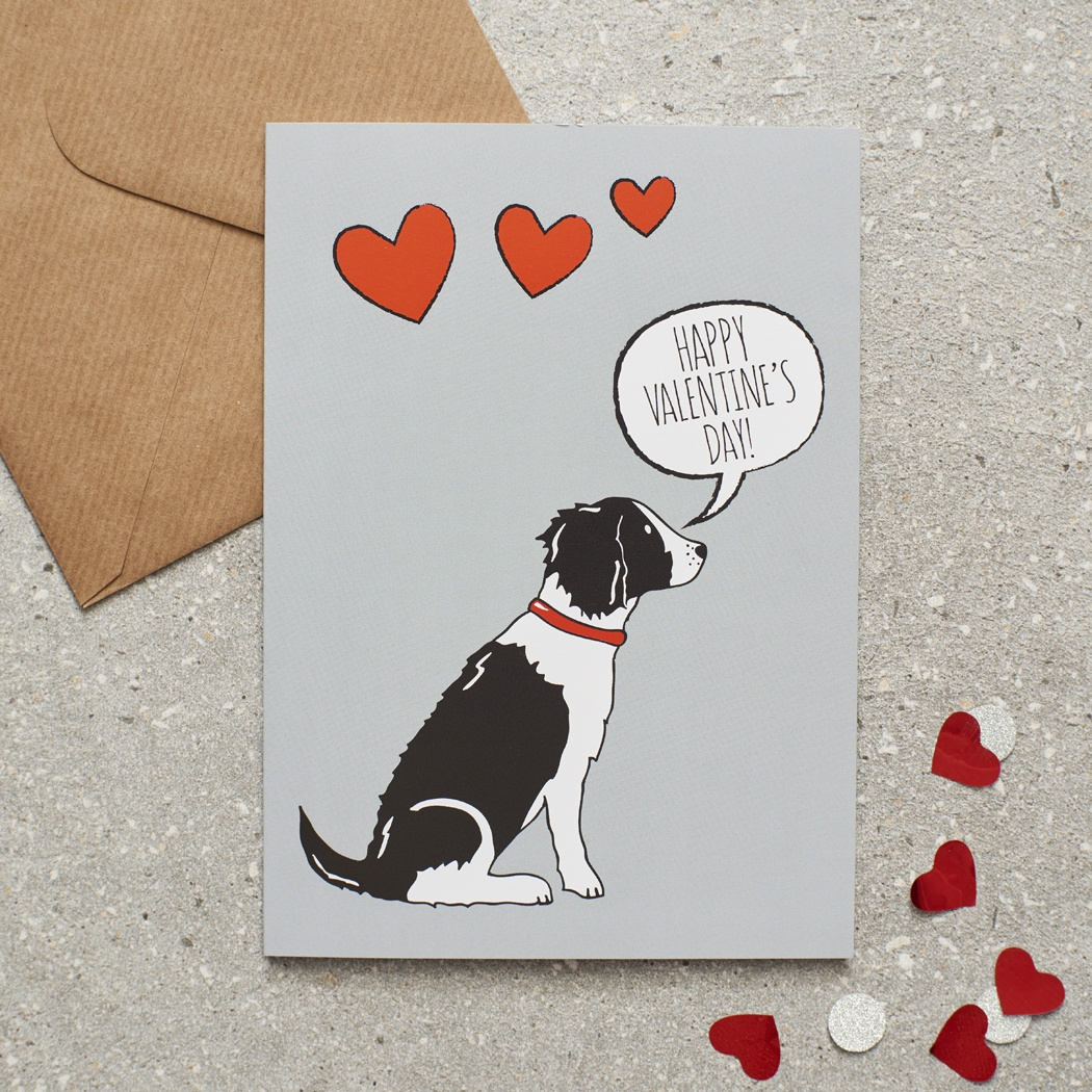 Springer Spaniel (black & white) Valentine's Day Card , Mischievous Mutts > Greeting Cards , Springer Spaniel