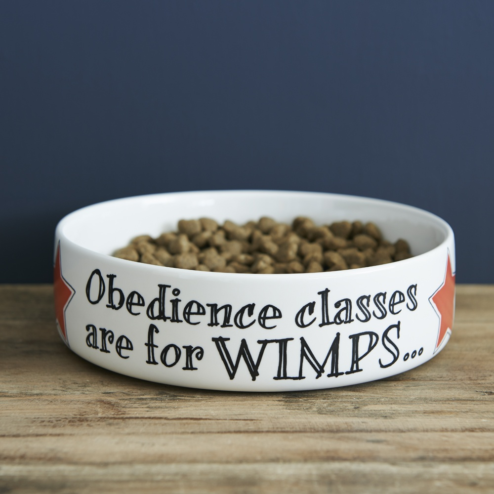 Obedience classes are for wimps dog bowl , Mutts & Moggies > Dog bowls ,
