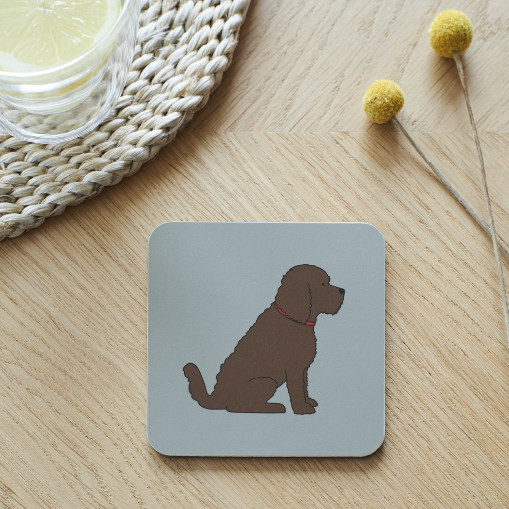 Cockapoo / Labradoodle (chocolate) Coaster , Coasters , Cockapoo