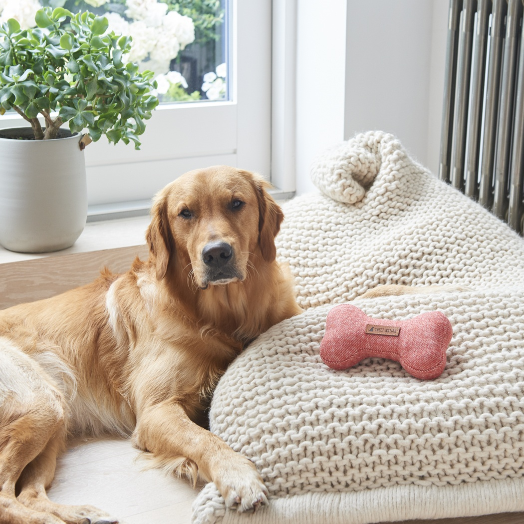 Tweed dog bone - orange , Dog Toys ,
