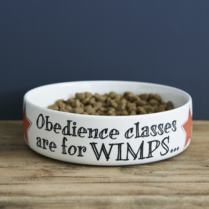 """Obedience classes"" dog bowl"