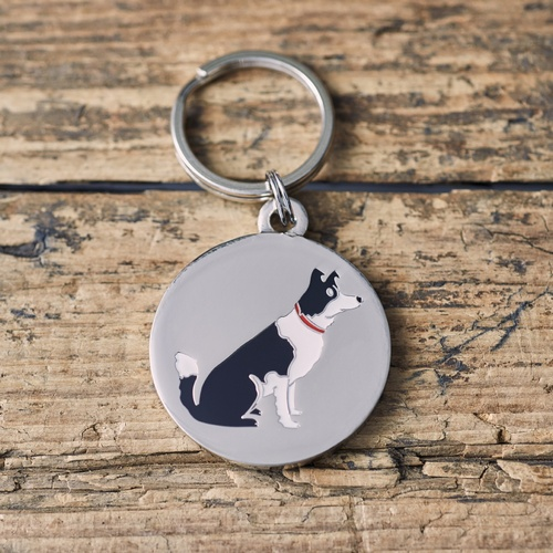 Border Collie Dog ID Name Tag
