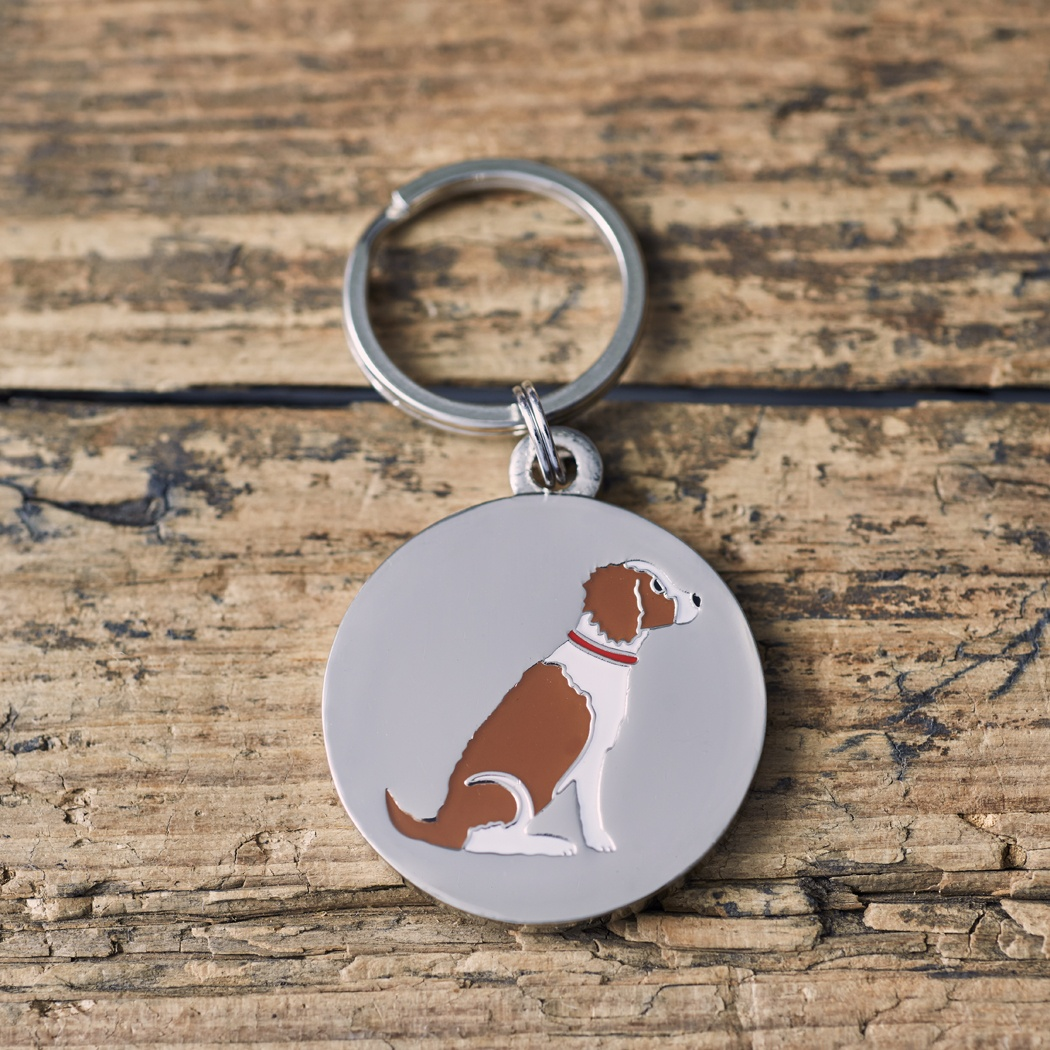 Springer Spaniel (Liver & White) Dog Tag